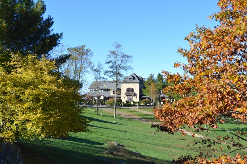 Chateau Morrisette Winery in October