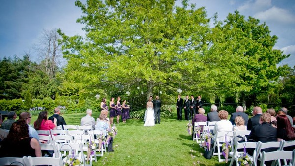 wedding at Chateau Morrisette