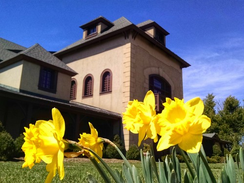 Chateau Morrisette Winery in April