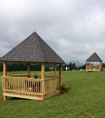 Gazebo Package for The Black Dog Country Music Festival July 14